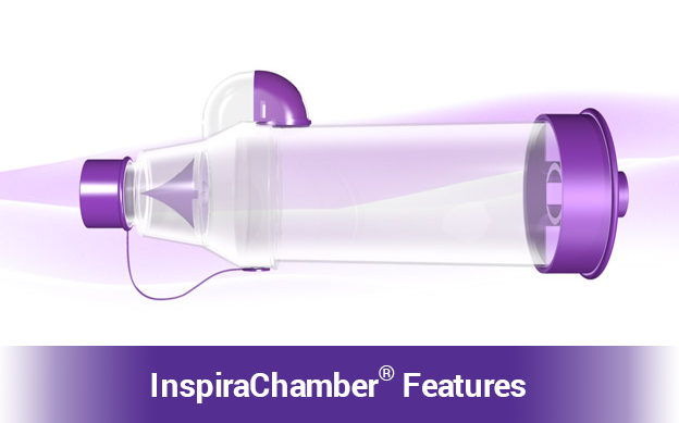 InspiraChamber Features video